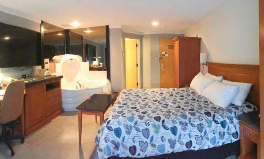 Avalanche Suite